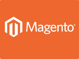 Magento Development Company, Delhi, India
