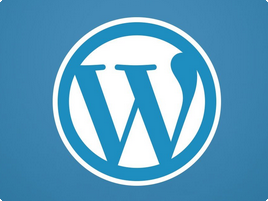 WordPress Development Company in Delhi